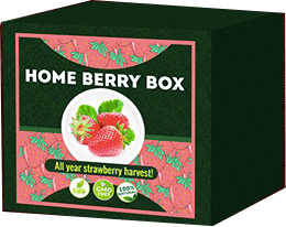 Home Berry Box qué es?