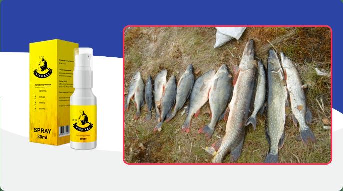 Fish XXL Instrucciones para el uso de Fish XXL